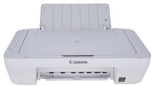 Canon MG2410 Printer